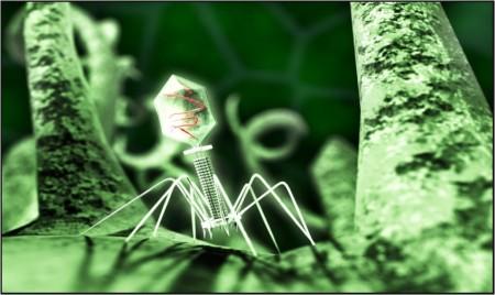 Representation of a viral bacteriophage.